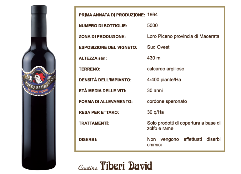 vino cotto tiberi david