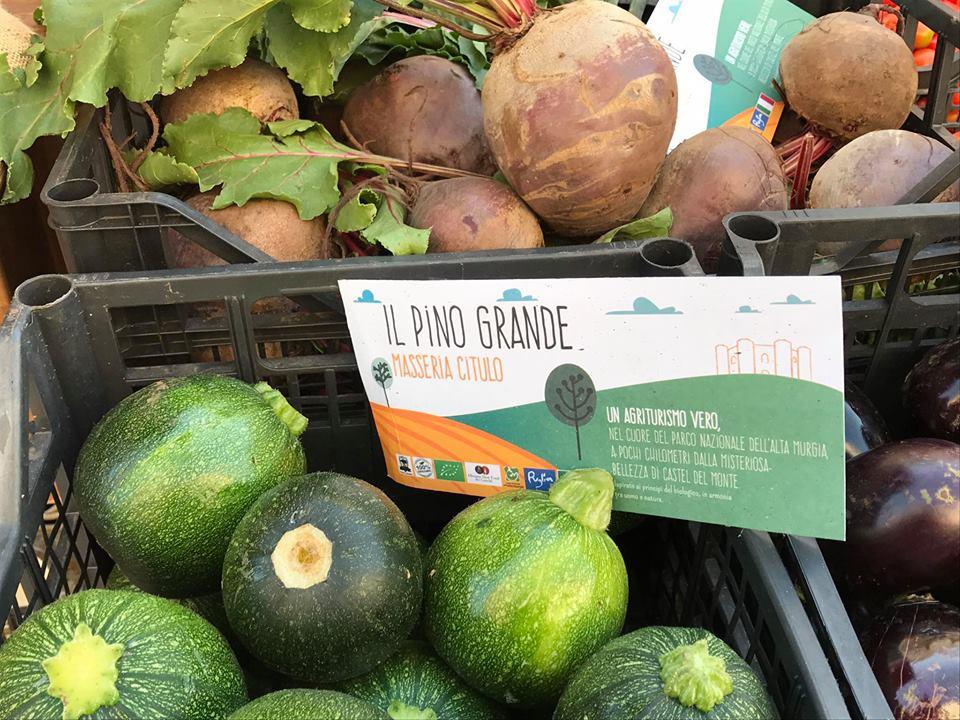 il pino grande prodotti agricoli