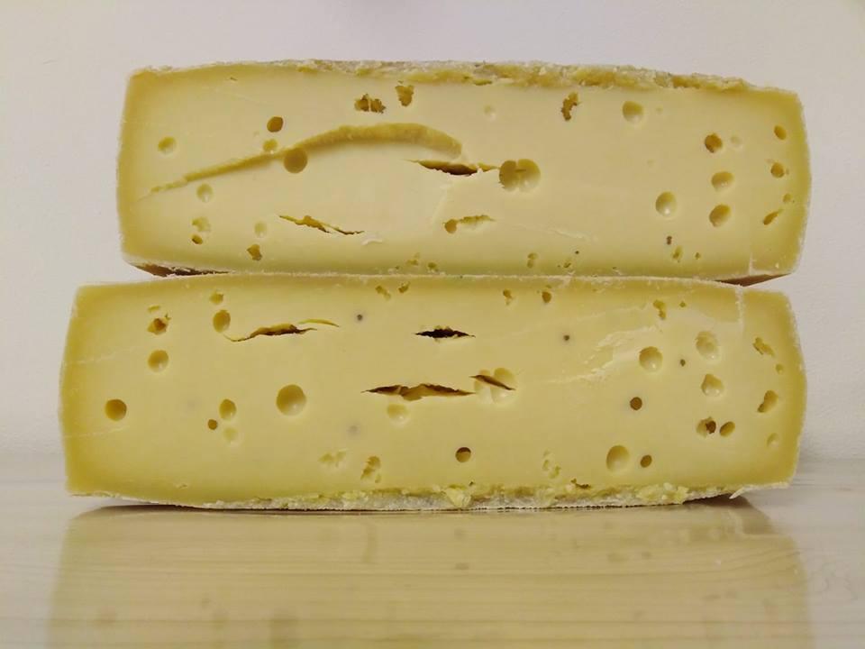 azienda turcato formaggi