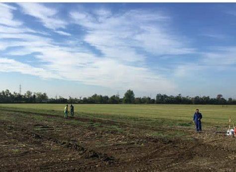 Il Platano, società agricola a Treviglio