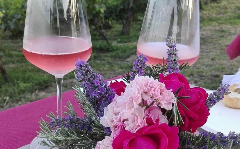 Azienda vitivinicola Formaggini e Peveri