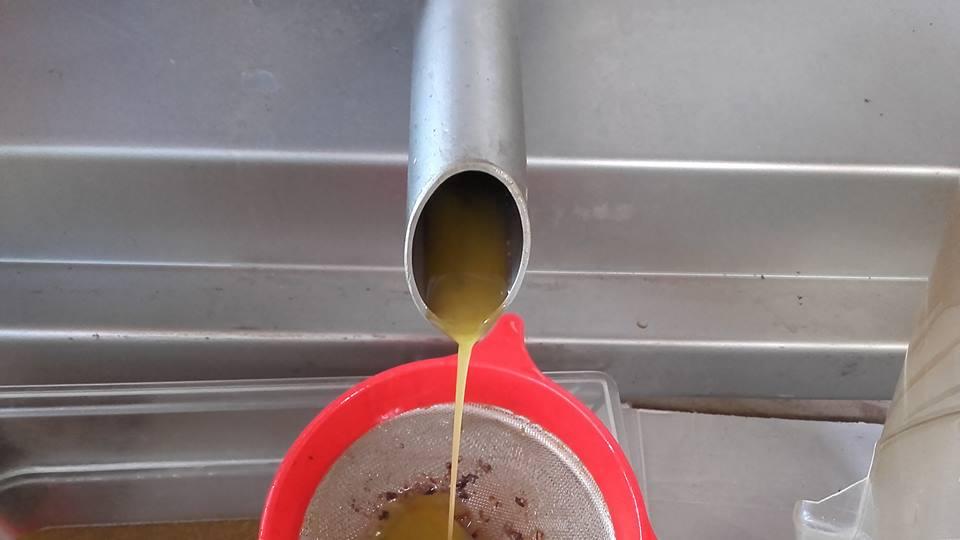 azienda lorese olio extravergine