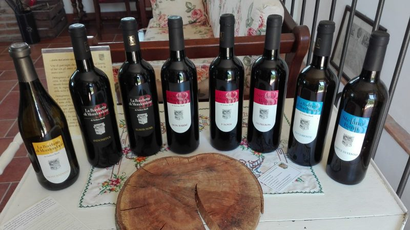 I vini naturali della Rocchetta di Mondondone