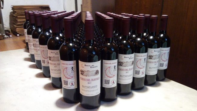 I vini di Bricco dei Roncotti