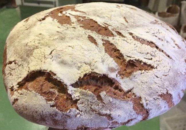 Il pane fatto con la farina 11 grani di Podere Monticelli