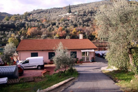 Azienda Agricola Damiano Agricola