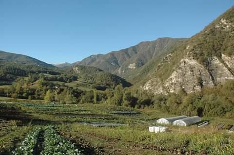 Azienda Agricola Le Cascate