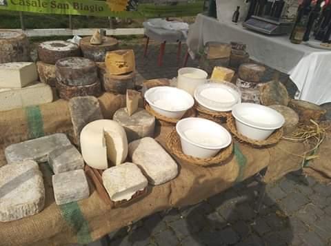 I formaggi dell'Azienda Agricola Bio San Biagio