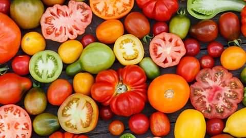 Azienda Agricola La Margherita Pomodori da tutto il mondo