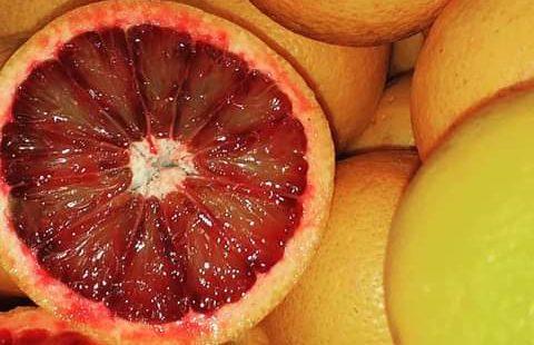 Le arance rosse dell'Azienda Agricola Patea
