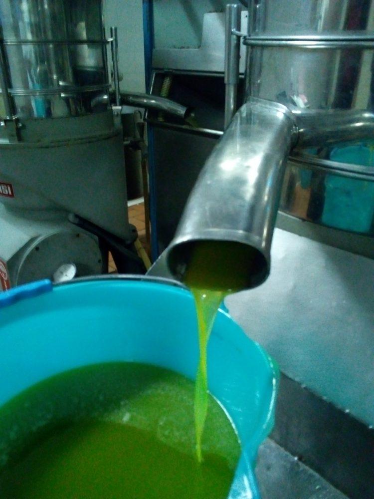 L'olio dell'Azienda Agricola Bettetini